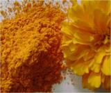 Zeaxanthin Marigold extract--Natural